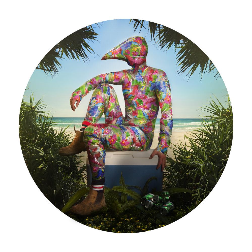 Tropics from Gerwyn Davies' Subtropics  series.