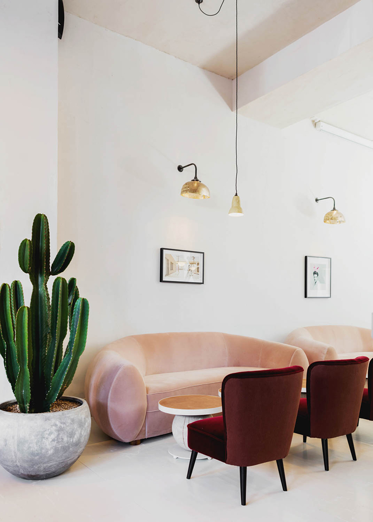 Plush armchairs, terracotta tiles, gold pendant lighting and giant verdant cacti are offset against the whitewashed floors and pastel pink walls at London bar and restaurant, No.197 Chiswick Fire Station.