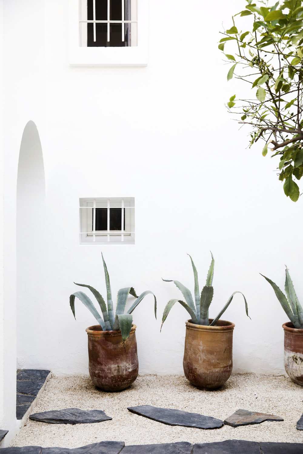 The wonderful courtyard of Caitlin and Samuel Dowe-Sands in Marrakech, from  Natalie Walton's  new book  This Is Home . Photo - Chris Warnes.