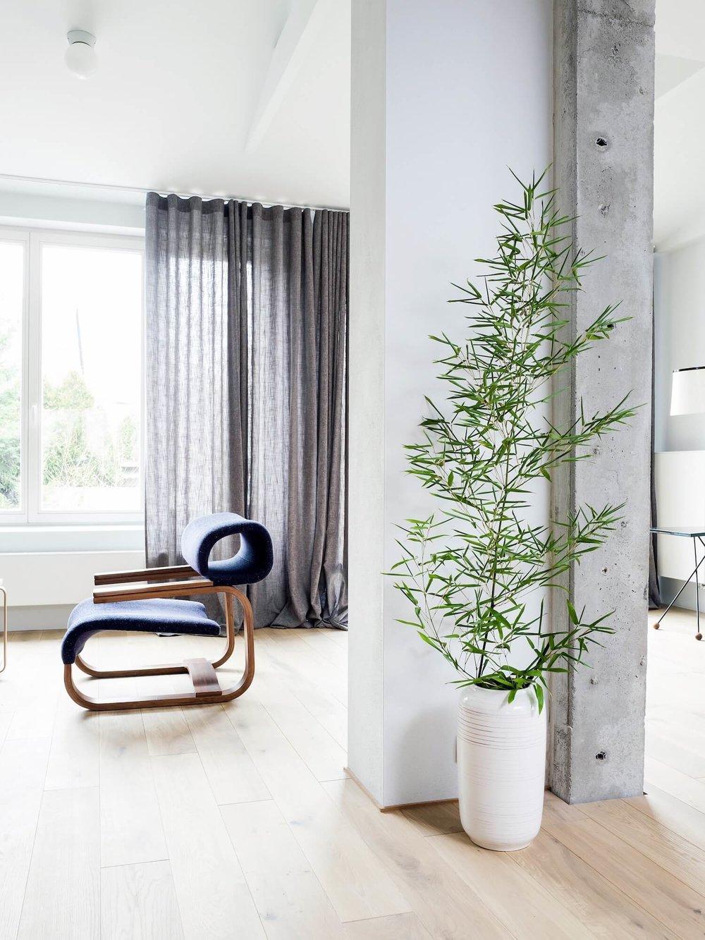 est_living_house_in_pogodna_4.jpg