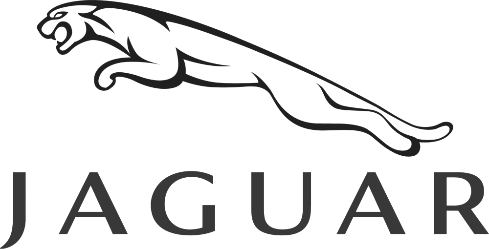 Jaguar-grey.png