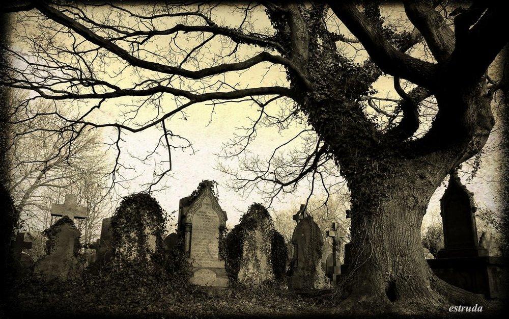 old_victorian_cemetery_by_estruda-d5g1bjo.jpg