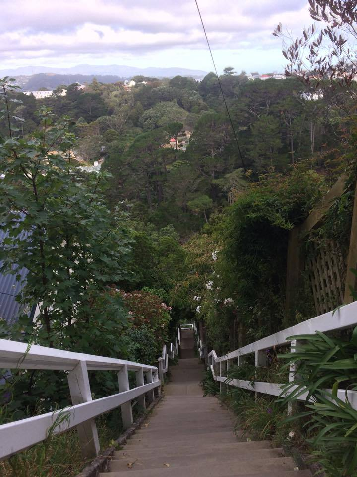 View from the top of the Orangi Kaupapa Road stairs