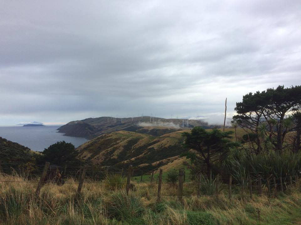 B.e.a.utiful location out at Makara! Thankfully we managed to sneak in a cheeky trail run in between bouts of run. #Good'olWellington