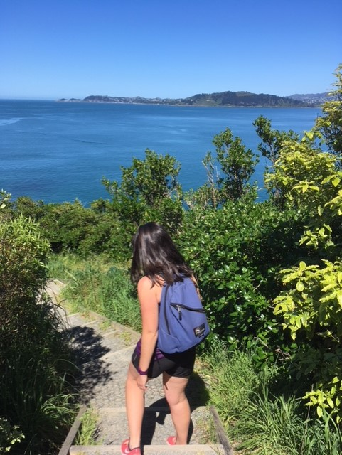 Mindfulness is NOT necessarily sitting on the floor in lotus position! It can be practiced, for example, when being out and about exploring nature. Photo taken in the weekend on Matiu-Somes Island.