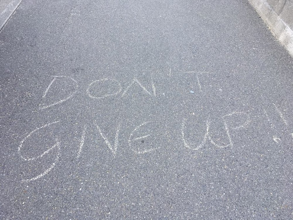 I took this photo on the streets of Lyall Bay in the weekend. I keep seeing and hearing the message 'DON'T GIVE UP!' Maybe this will be as helpful a reminder for you as it was for me? :)