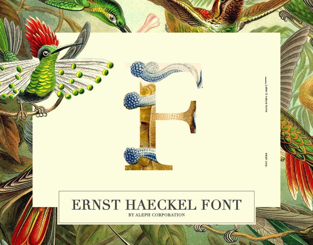 Ernst Haeckel Font - Ernst Haeckel Font is designed by aleph corporation. The font is inspired by Ernst Haeckel's illustrations (Kunstformen der Natur). The aim of this project was to cherish and value the amazing work of Ernst Haeckel. May it be that with the help of this project, Haeckel's efforts and accomplishments be more known and appreciated.