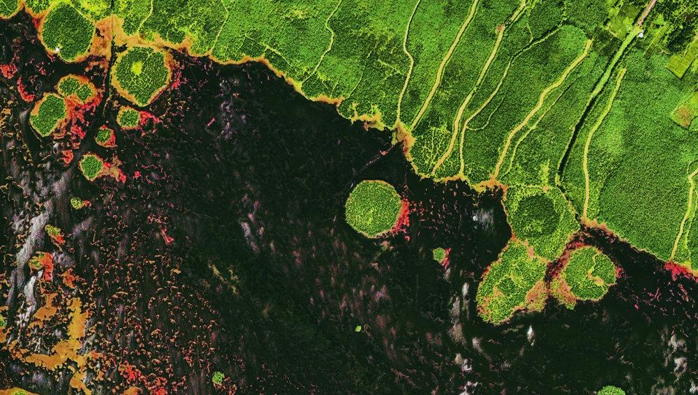 Iran - Gilan - Anzali Lagoon.jpg