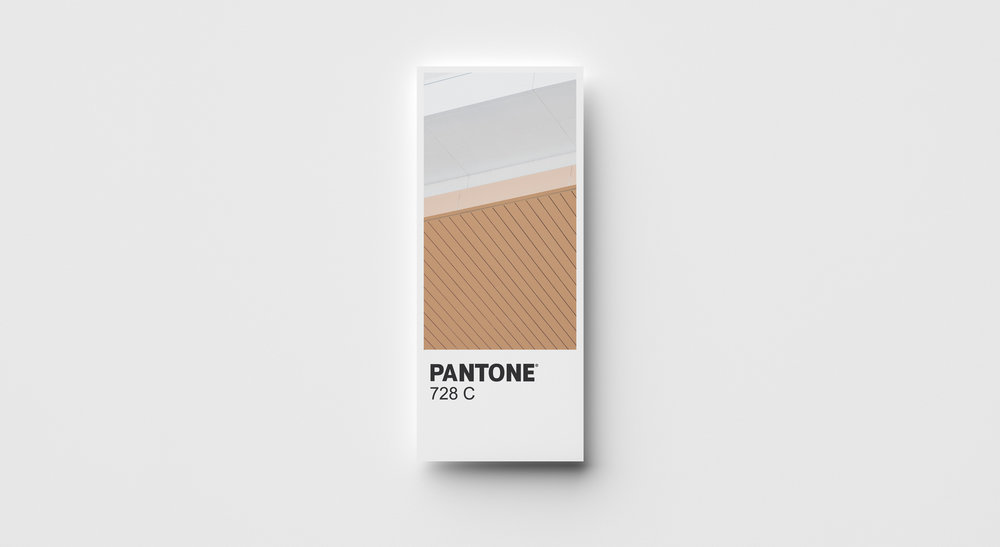 Color Mockup -  Gold.jpg
