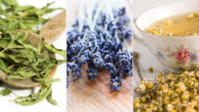 5-Calming-Herbs-to-Soothe-Anxiety-1440x810.jpg