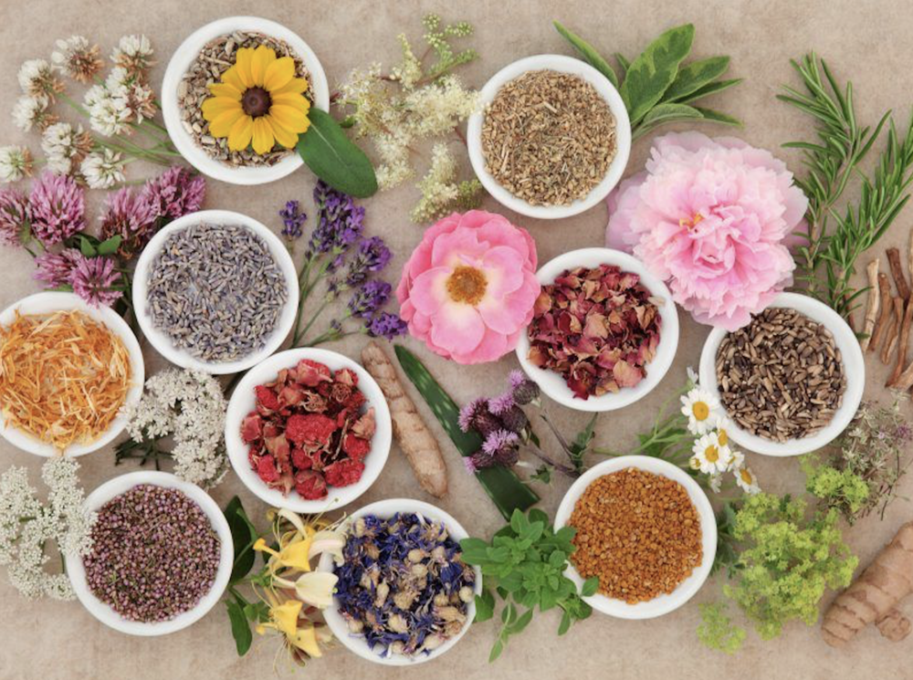 There are many herbal medicines which studies and tradition have shown help with pain