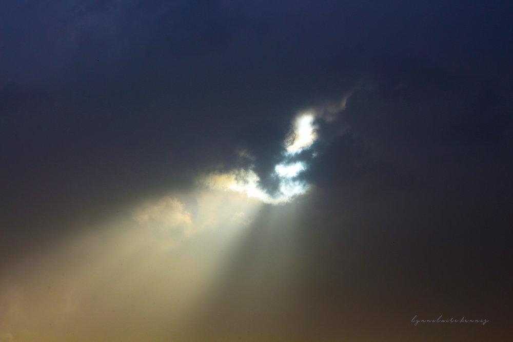 longing for the light.jpg