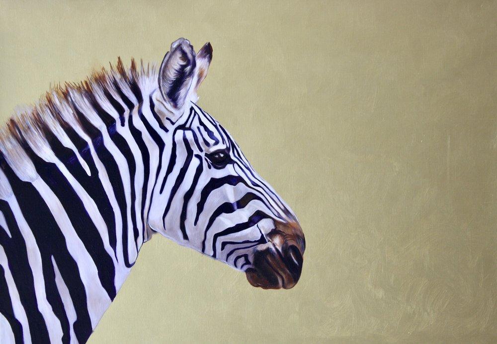 Zebra #1