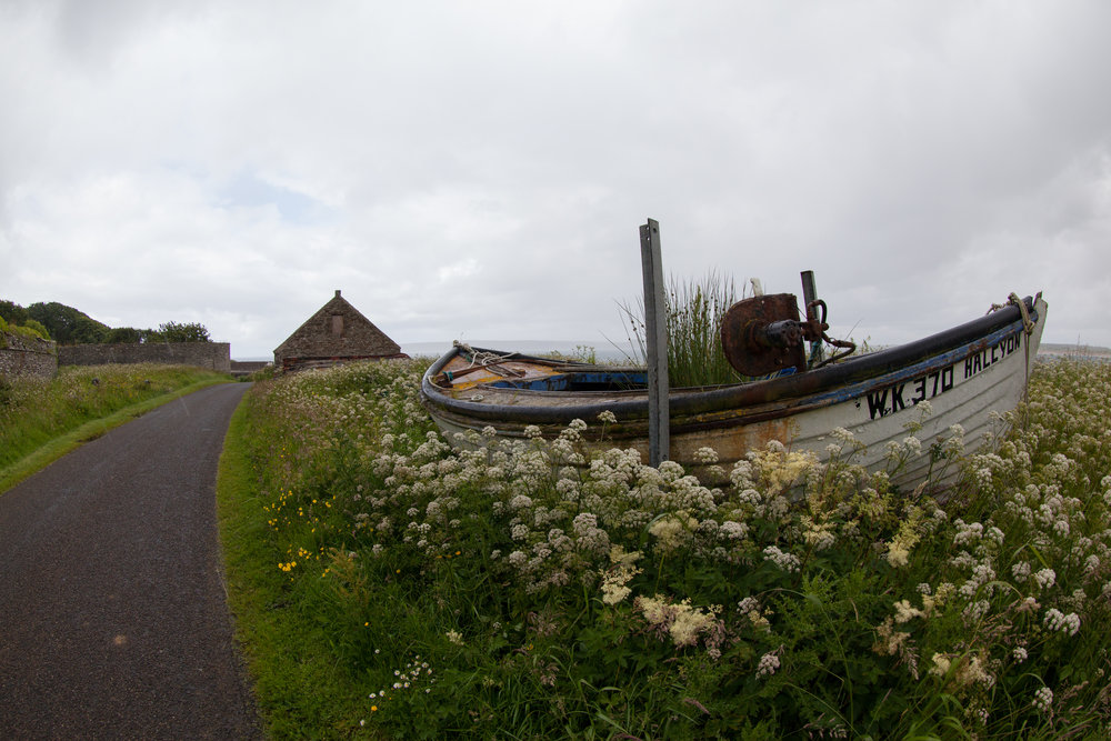 A boat lies in a meadow on the side of the road.