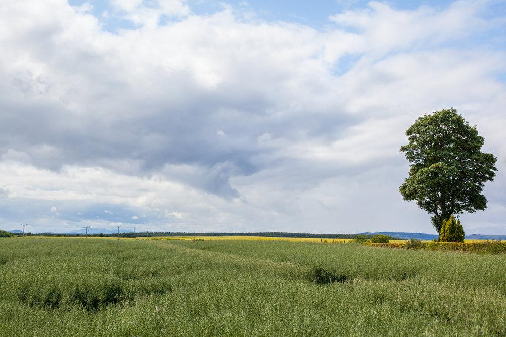 A landscape photograph.