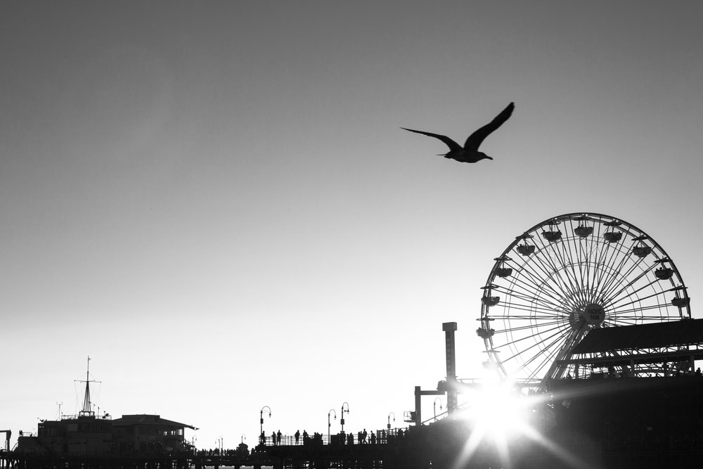 Santa Monica Pier in Black & White.