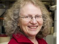 Professor Betty Diamond MD