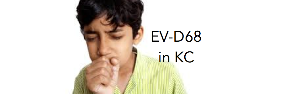 EVd681.png
