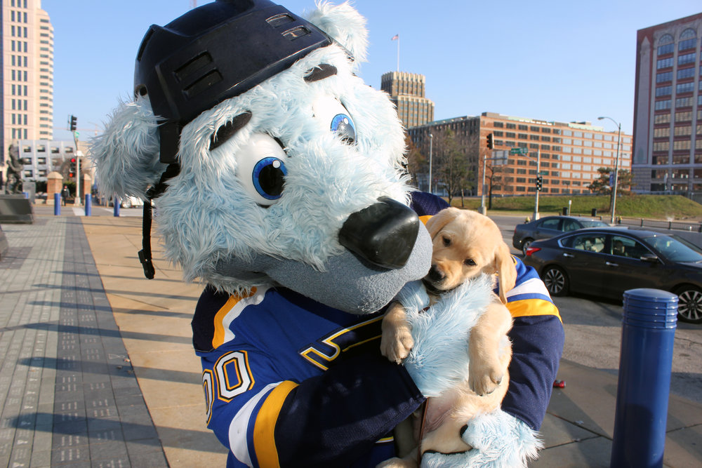 BFF's Fur-ever! Louie and Barclay pose outside of Enterprise Center. After thousands of submissions online, the puppy's name was chosen in honor of Barclay Plager. Photo Courtesy of the St. Louis Blues