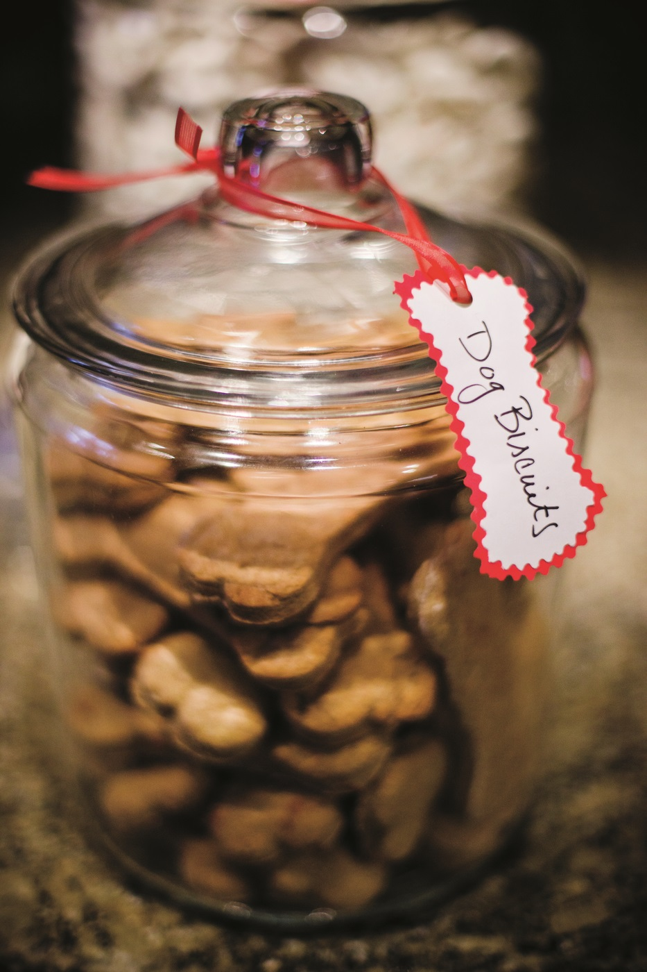 Dog Biscuits- RC.jpg