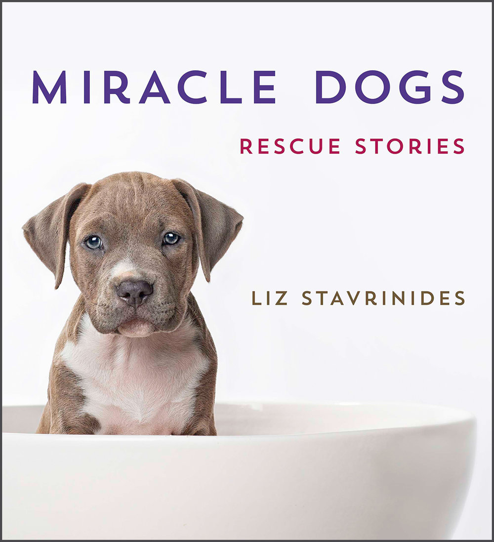 miracle-dogs-rescue-stories-cover.jpg