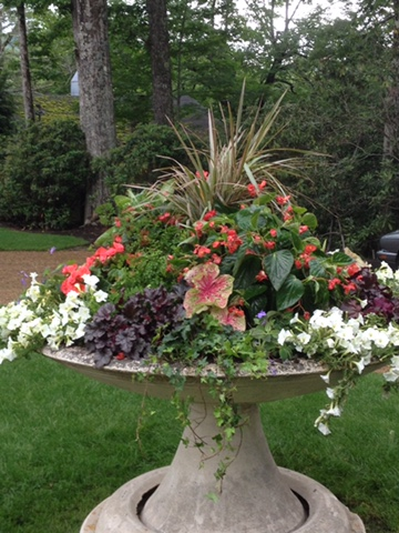 container-gardens-local-boone-nc.JPG