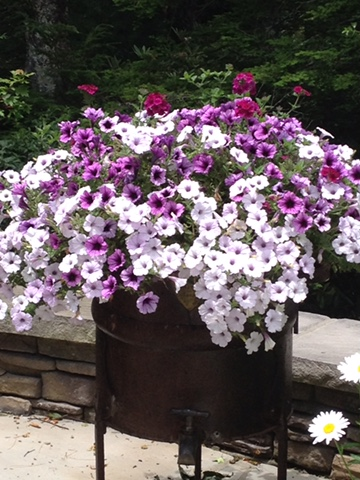 container-gardens-wrens-nest-landscaping-booen-nc.JPG