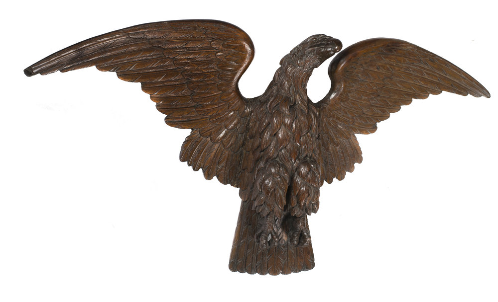 Young Eagle 2.jpg