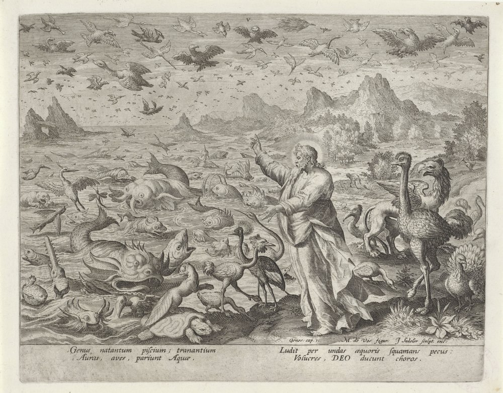 Jan Sadeler I after Maarten de Vos:  The Fifth Day  (from  Imago Bonitatis )