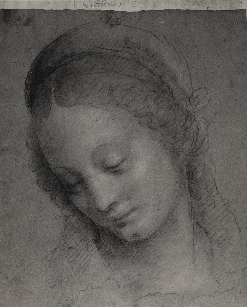 Fig. 1. Bernardino Lanino,  Head of a Virgin , black, white, and yellow chalk on blue paper, 11 2/5 x 9 4/5 inches (29 x 25 cm), private collection, Santa Barbara