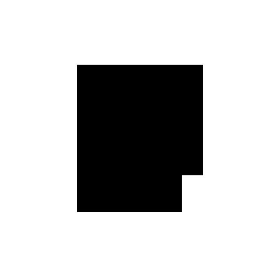 noun_125149_cc (1).png