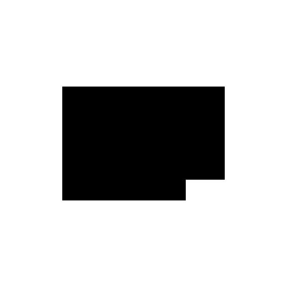 noun_686009_cc.png