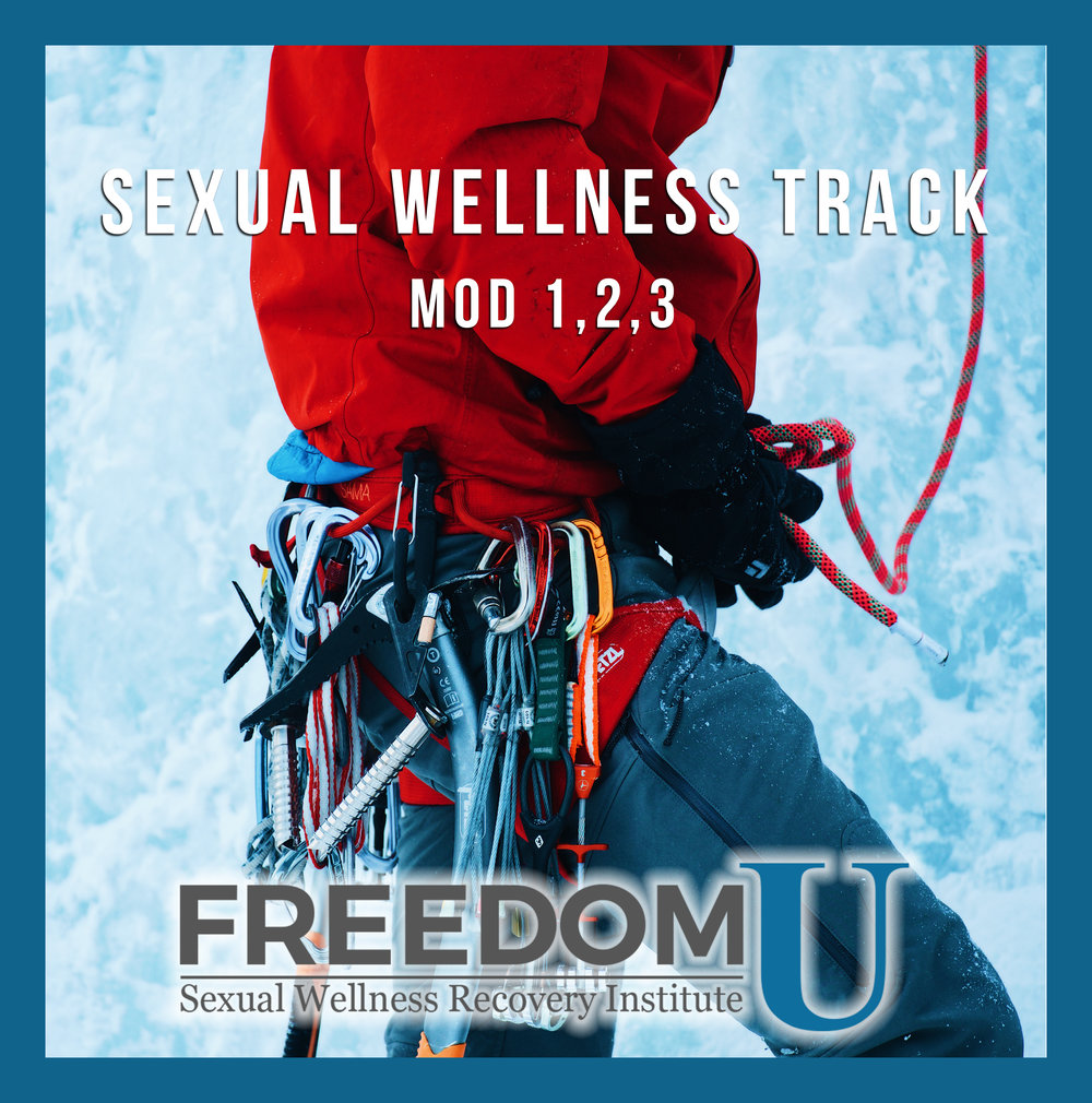 The  Complete Sexual Wellness Ecourse is designed to propel you towards freedom and wellbeing on your journey from compulsive sexual behavior into personal, relational, emotional, and spiritual wellness. Freedom U Sexual Wellness Recovery Institute. www.freedomu.net