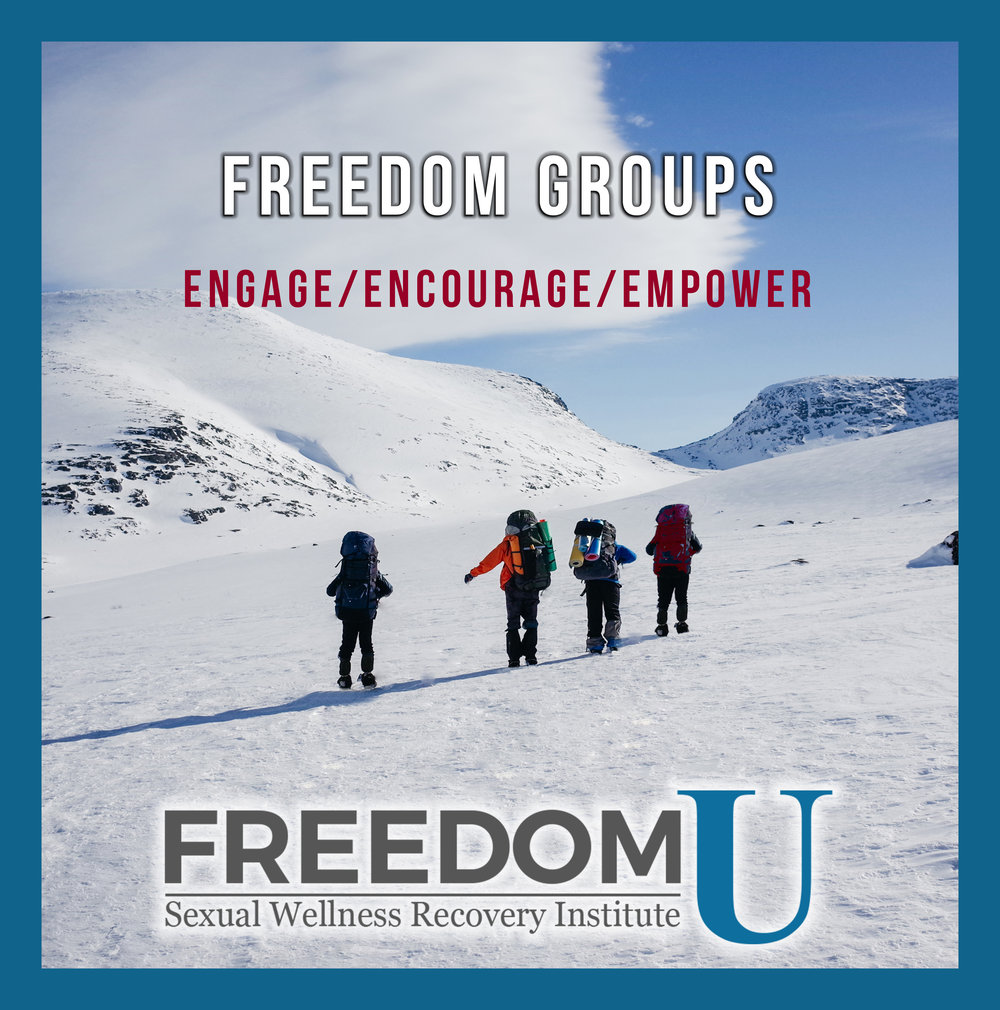 Freedom Support Groups  are led by our certified coaches to provide a safe environment, in which each client is encouraged to share the challenges and breakthroughs in their quest towards freedom and wellbeing, and discuss positive feedback and strategies among the group. Freedom U Sexual Wellness Recovery Institute. www.freedomu.net