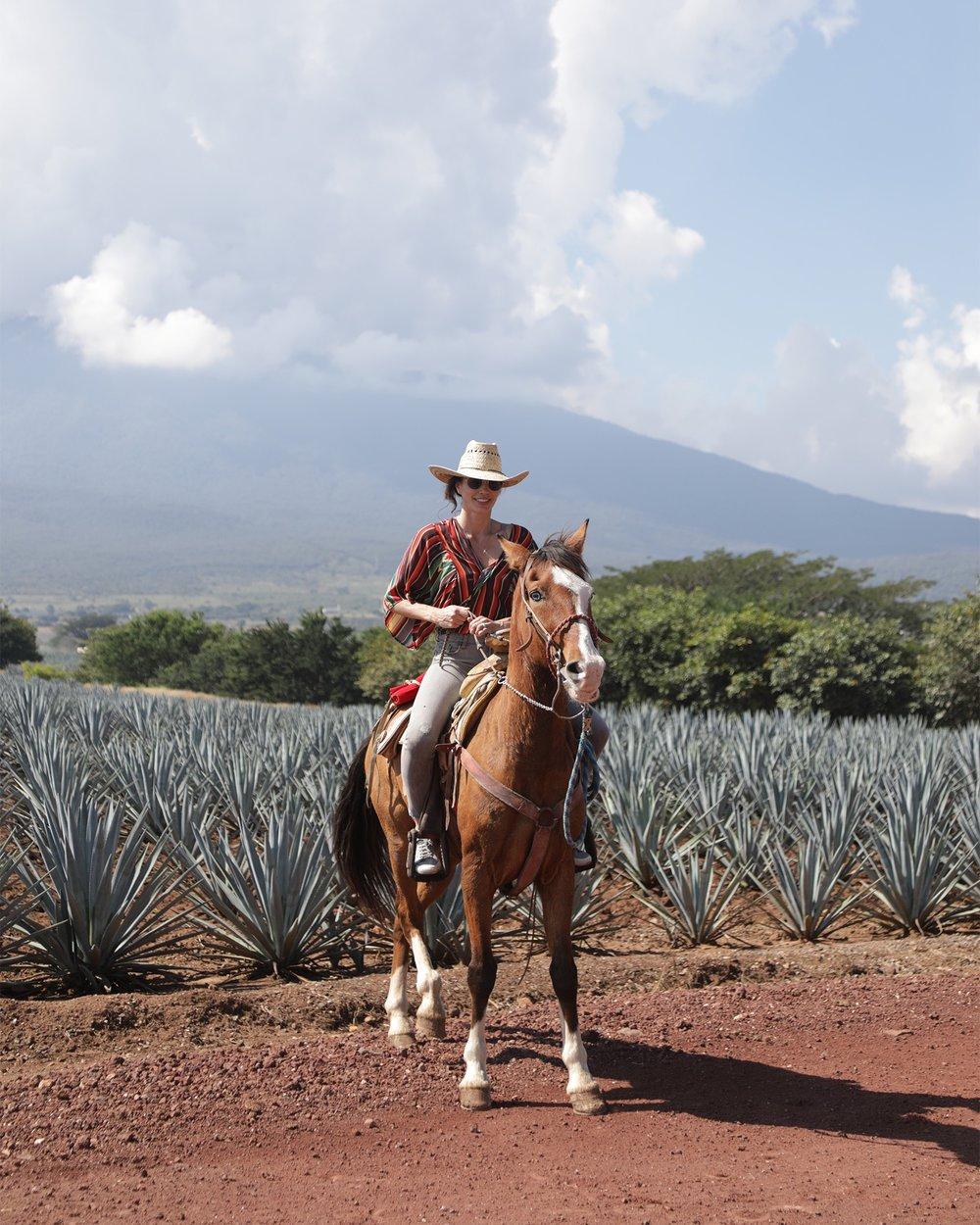 Classic Guadalajara_Horseback Riding.JPG