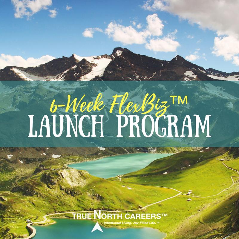 FlexBiz Launch Program.png