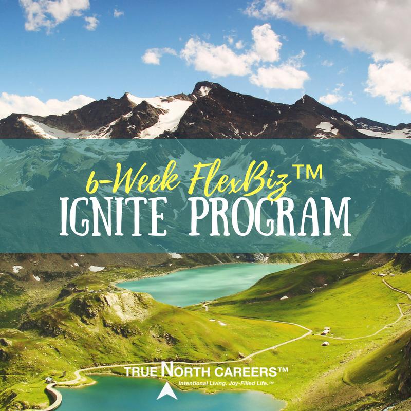 FlexBiz Ignite Program.png