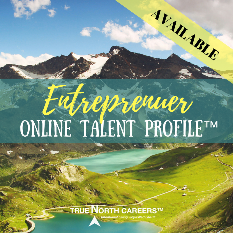 Online Talent Profile for Entreprenuers-2.png