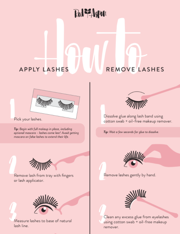 How to Apply/ Remove Lashes Infographic -