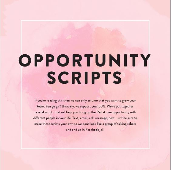Opportunity Meeting Scripts -