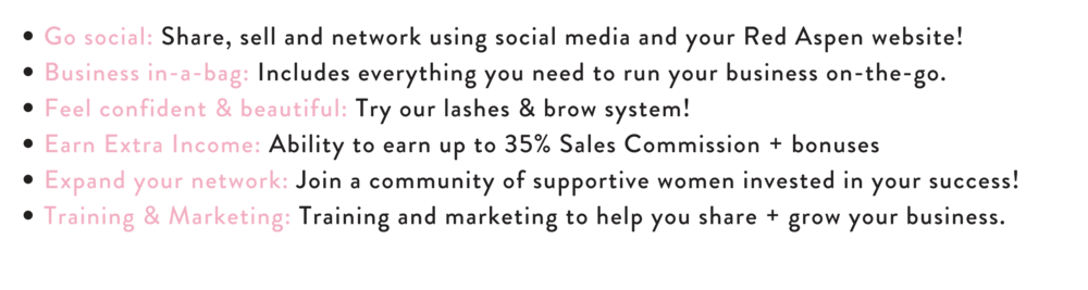 Go social_ Share, sell and network through social media and your custom Red Aspen website! Business in-a-bag_ Our Business Kit includes everything you need, no additional inventory required. Take it wherever you go.png