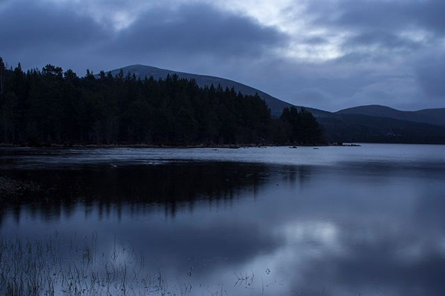 Would you believe this was a sunrise? Wasn't expecting the Blue hour but managed to capture it!  #blue #bluesunrise #sunrise #landscape #landscapephotography #photography #nature #naturephotography #femalephotographer #scotland #cairngorms #cairngormsnationalpark #trees #sky #mountians #water #loch #waterscape #lovelandscapes #lovescotland #lovenature #ilovenature #cloud #colour #winter #discoverscotland #cold #earlystart #morning