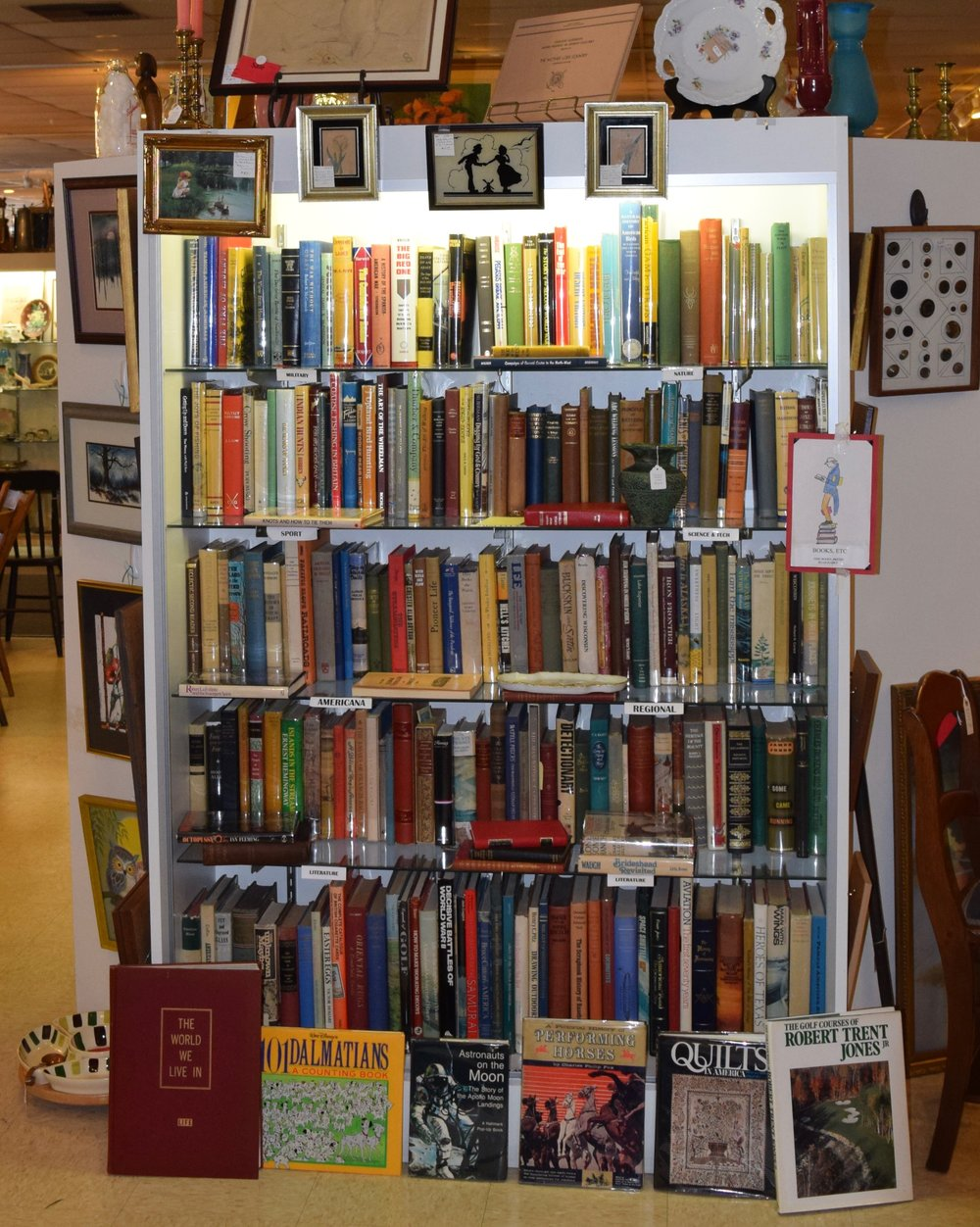 Wonderful Assortment of Unique Books