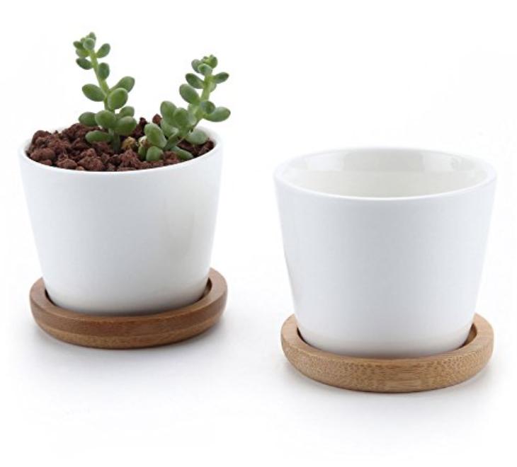 Mini plant pots from Amazon