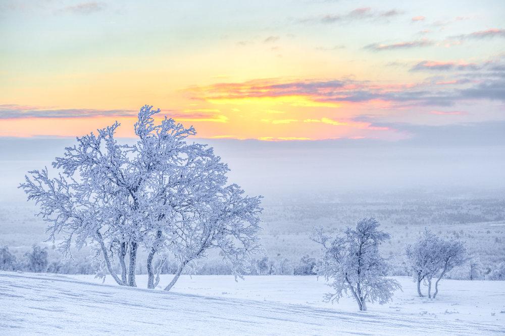 arctic_desert-11.jpg