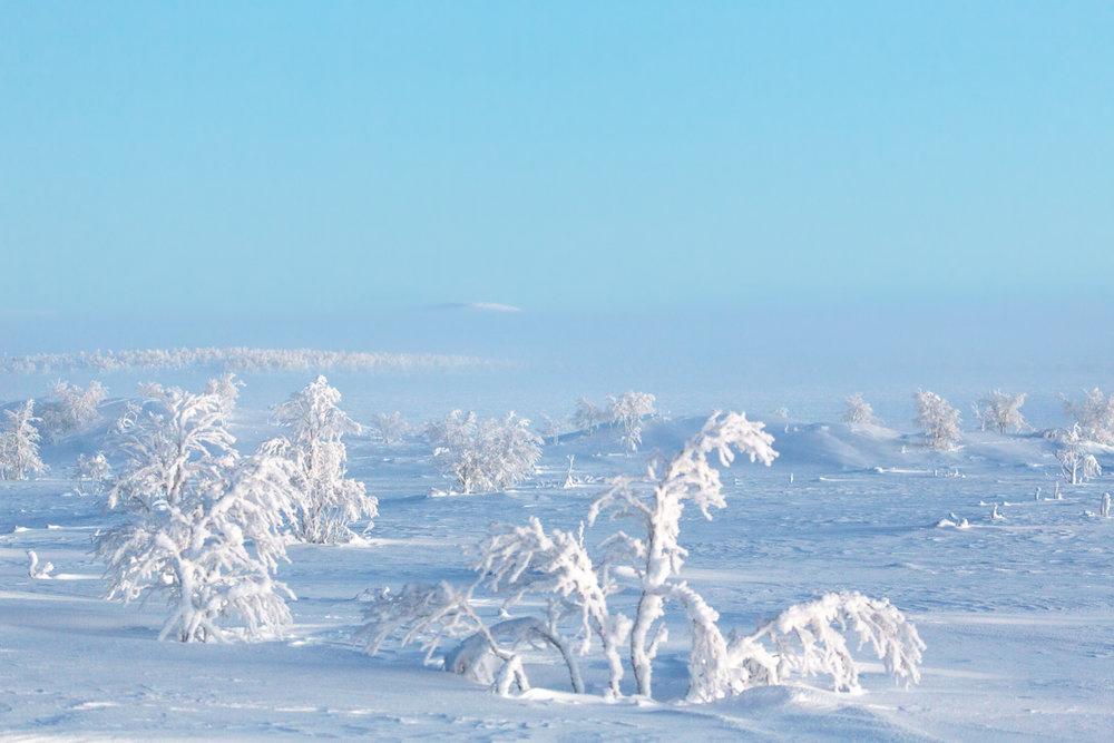 arctic_desert-107.jpg