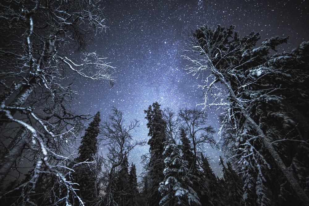winter_stars_4.jpg