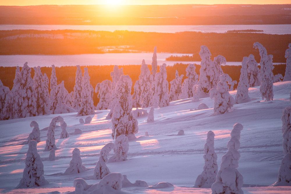 winter_sun-32.jpg