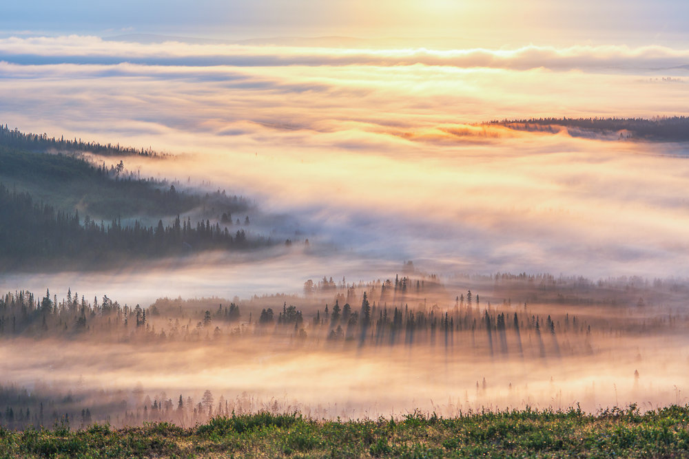 fog_uus-33.jpg