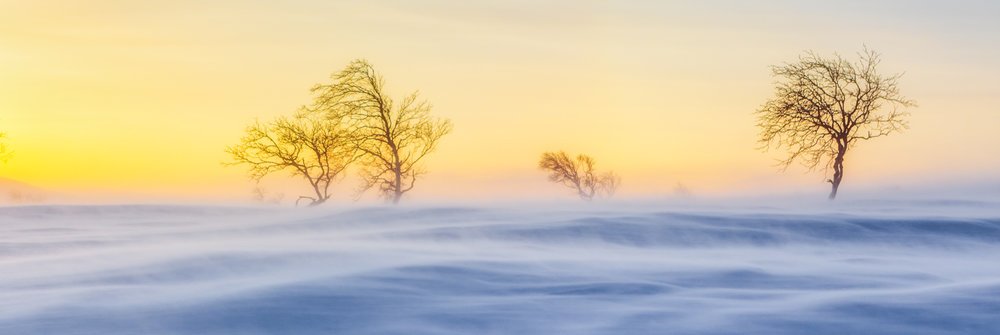 arctic_landscape_sunset_photoshoot.jpg